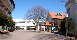 Senshu University Matsudo Junior and Senior High School